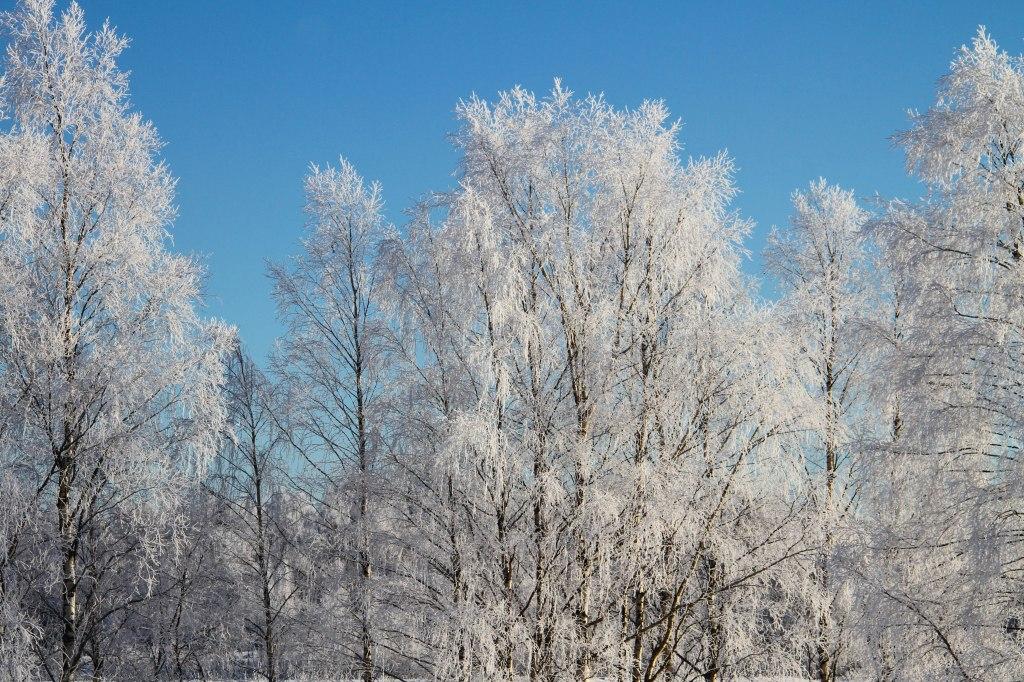 snow_castle_12